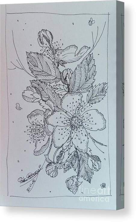 Canvas Print featuring the drawing Peach Flowers by Paola Baroni
