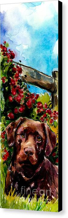 Chocolate Labrador Retriever Canvas Print featuring the painting Chocolate Raspberry Fields by Molly Poole