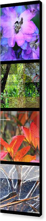 Spring Canvas Print featuring the photograph Spring Summer Fall Winter Skinny Type by Andrew Sliwinski