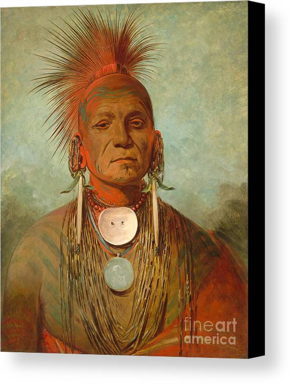 Native; American; Indian; Male; Head; Shoulders; Traditional; Dress; Clothing; Face; Paint; Shaman; Fierce; Proud; Jewellery; Ethnic; Earring; Witch; Doctor; Powerful; Tribal; Tribe; Feathered; Headdress Canvas Print featuring the painting See Non Ty A An Iowa Medicine Man by George Catlin
