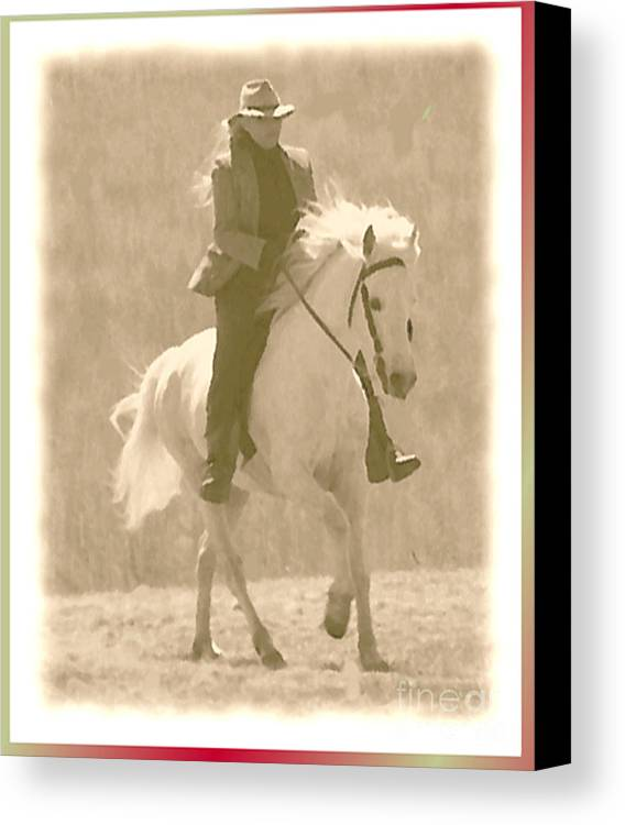 Horse Canvas Print featuring the photograph Stallion Strides by Patricia Keller