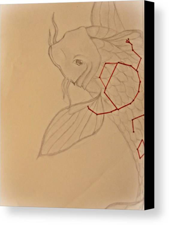 Kio Fish Canvas Print featuring the drawing Star Fish by Kaleigh Higgs