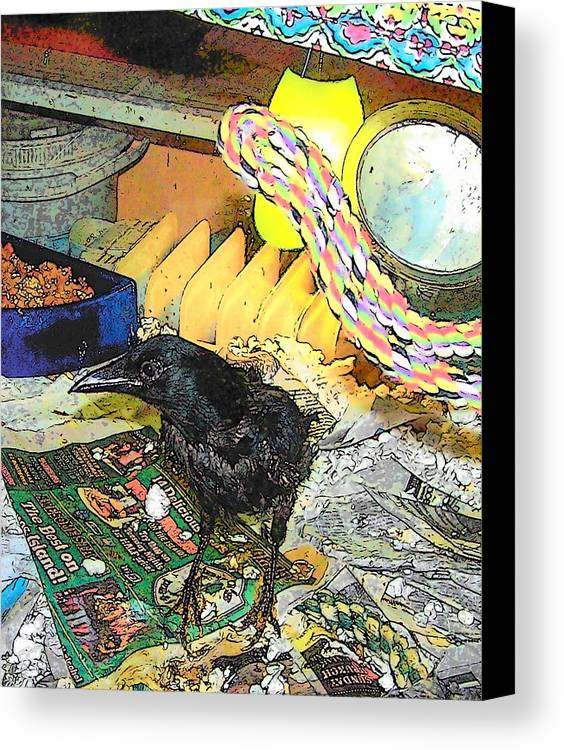Crow Canvas Print featuring the mixed media Crow In Rehab by YoMamaBird Rhonda