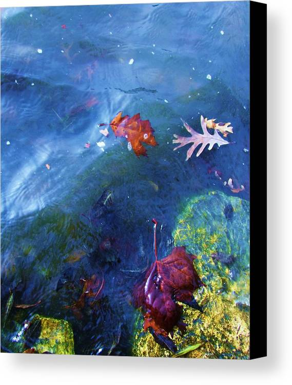 Abstract Water And Fall Leaves Canvas Print featuring the photograph Abstract-10 by Todd Sherlock