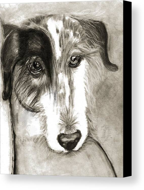 Dog Canvas Print featuring the drawing Blue by Crystal Suppes