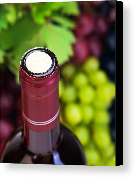 Depth Of Field Canvas Print featuring the photograph Cork Of Wine Bottle by Anna Om