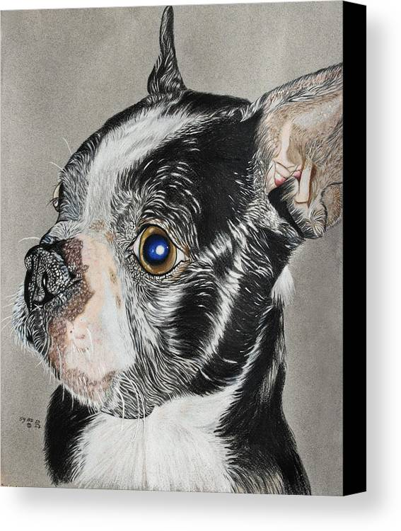 Dogs Canvas Print featuring the painting Evo by Ada Astacio