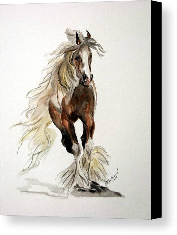 Gypsy Vanner Horse Watercolor Painting Canvas Print featuring the painting Gypsy Vanner Stallion by BJ Redmond