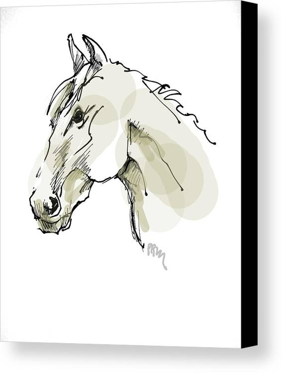 Horse Canvas Print featuring the drawing Head Sketch by Paul Miller