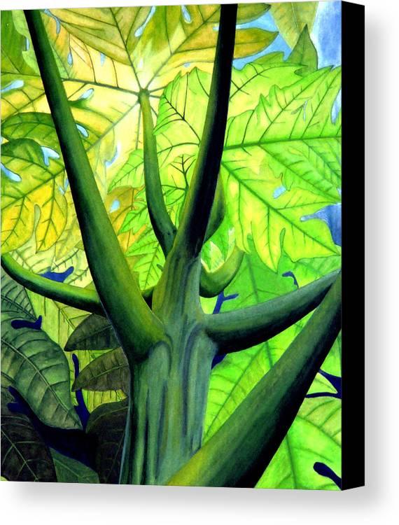 Papaya Tree Canvas Print featuring the painting Papaya Tree by Kevin Smith