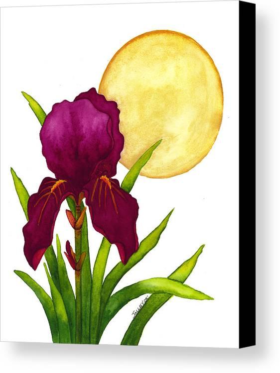 Iris Canvas Print featuring the painting Purple Iris by Stephanie Jolley