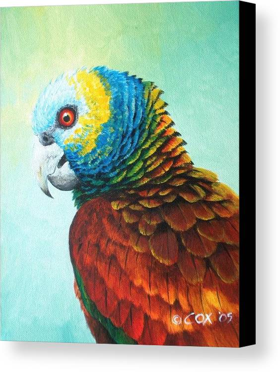 Chris Cox Canvas Print featuring the painting St. Vincent Parrot by Christopher Cox