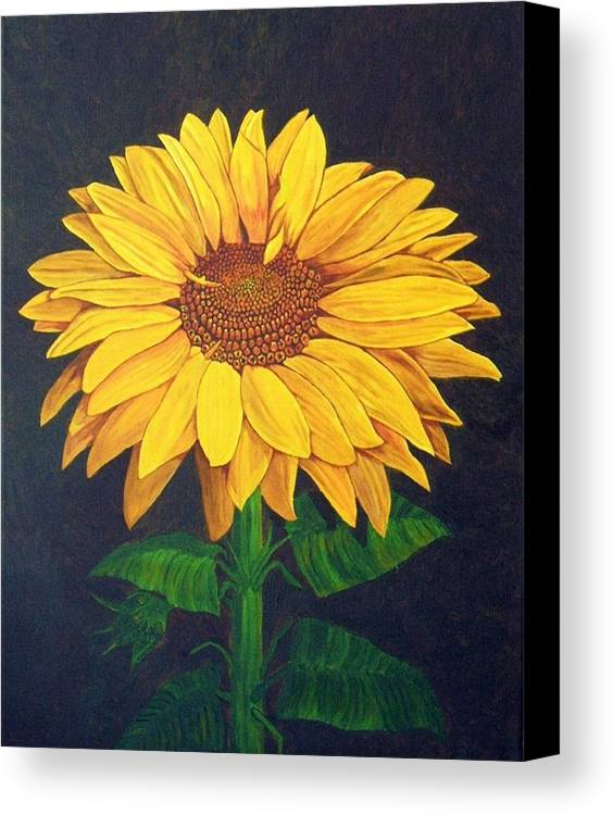 Sunflower Canvas Print featuring the painting Sunny Flower by Brandy House