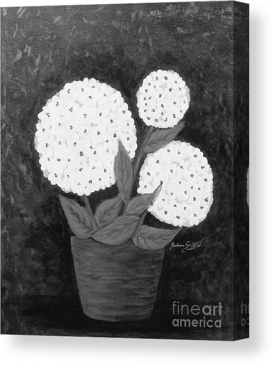 Snowball Plant Canvas Print featuring the painting Snowball Plant B W by Barbara Griffin