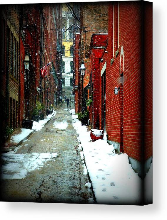 Boston Canvas Print featuring the photograph A Peaceful Stroll by Lisa Jayne Konopka