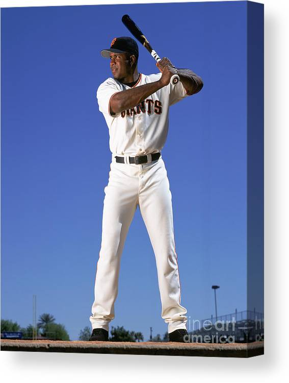 Arizona Canvas Print featuring the photograph Barry Bonds by Andy Hayt