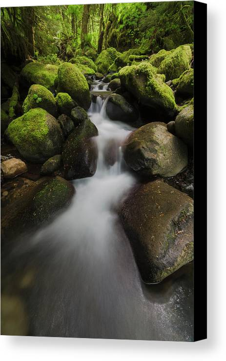 Cascade Canvas Print featuring the photograph Ruckel Creek Oregon, United States by Robert Postma