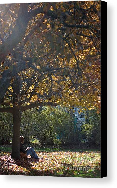 Fall Canvas Print featuring the photograph Waiting by Joseph Yarbrough