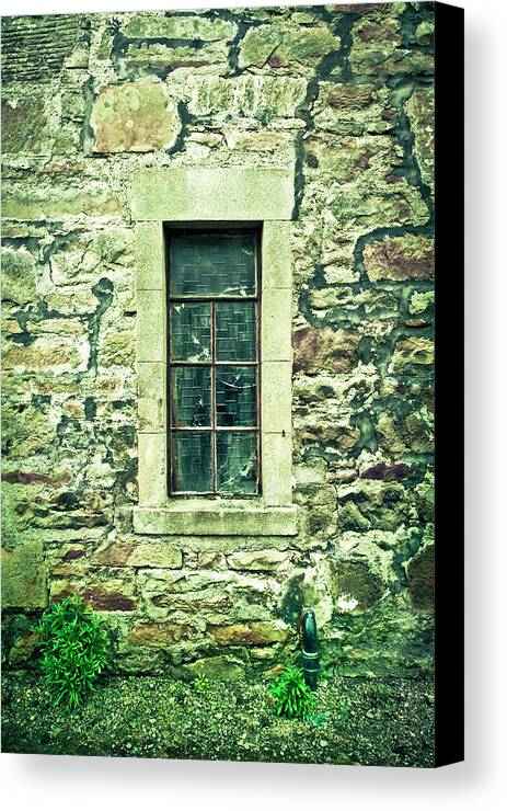 Abandoned Canvas Print featuring the photograph Window by Tom Gowanlock