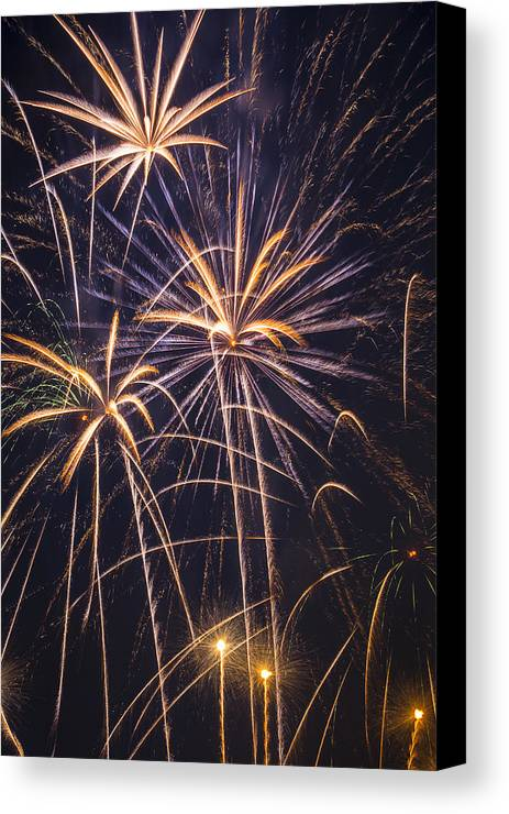 Fireworks Lights Up The Darkness Canvas Print featuring the photograph Fireworks Celebration by Garry Gay