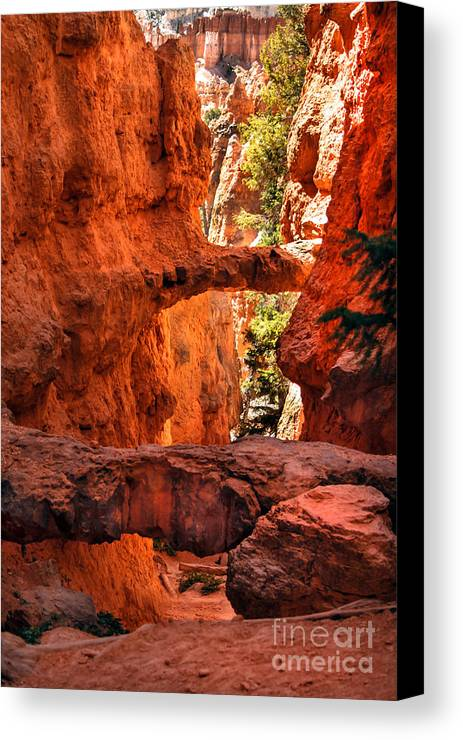 Bryce Canyon Canvas Print featuring the photograph A Bridge by Robert Bales