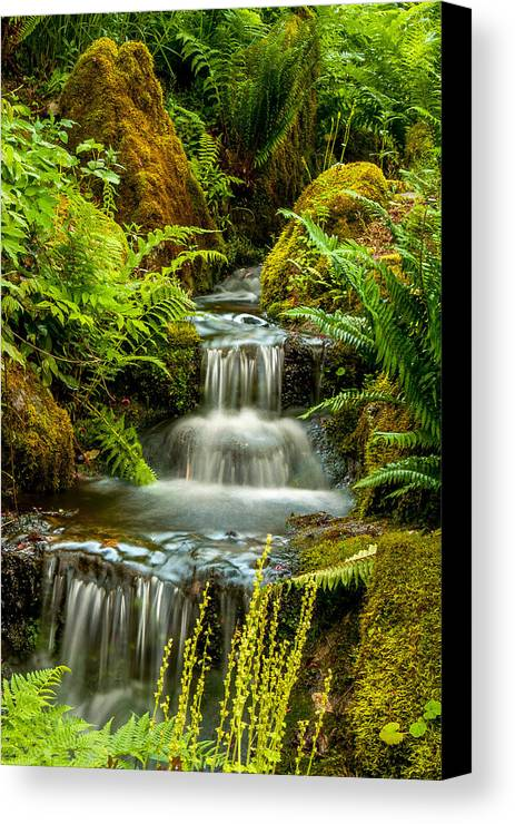 Minter Garden Canvas Print featuring the photograph A Creek Runs Through by Sabine Edrissi