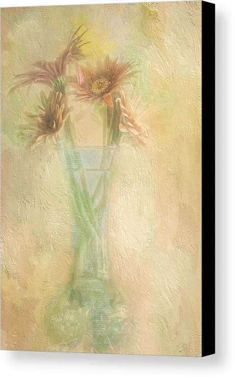 Daisies Canvas Print featuring the photograph A Vase Of Gerbera Daisies In The Sun by Diane Schuster