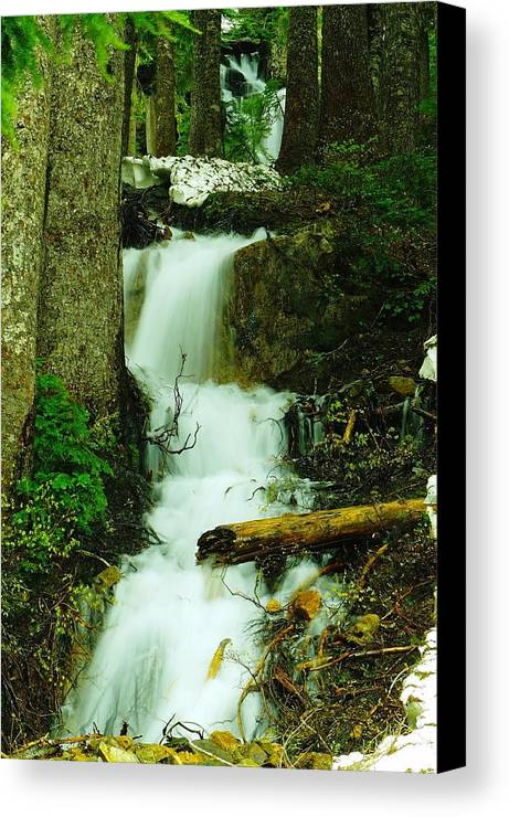 Snow Canvas Print featuring the photograph A Waterfall In Spring Thaw by Jeff Swan