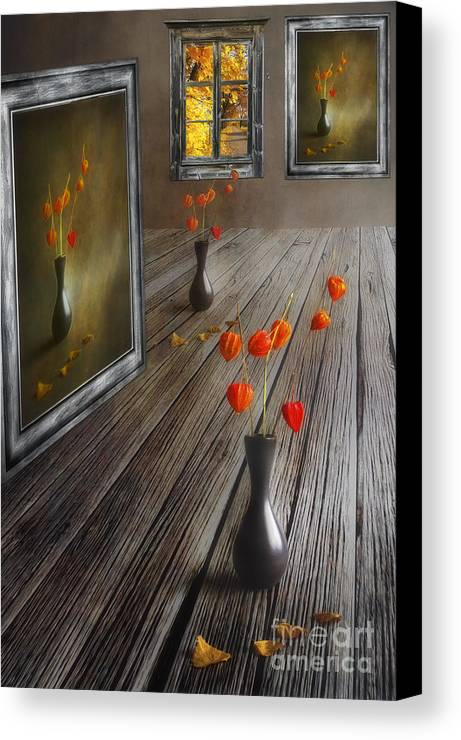 Art Canvas Print featuring the photograph Autumn Colours by Veikko Suikkanen