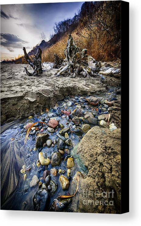 Beach Canvas Print featuring the photograph Beach Brook At Scarborough Bluffs by Elena Elisseeva