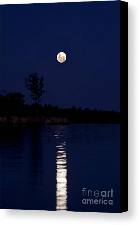Pam B Canvas Print featuring the photograph Blue Moon by Pam B
