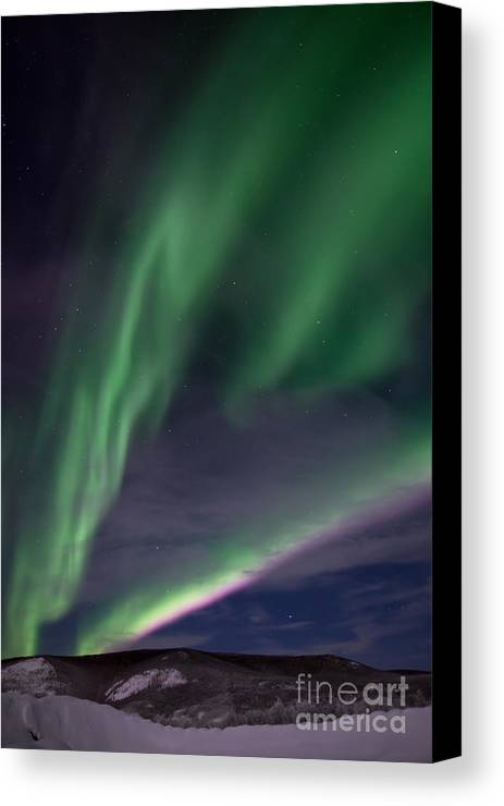 Snowy Canvas Print featuring the photograph Celestial by Priska Wettstein