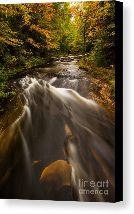 Michigan Canvas Print featuring the photograph Chapel River by Todd Bielby
