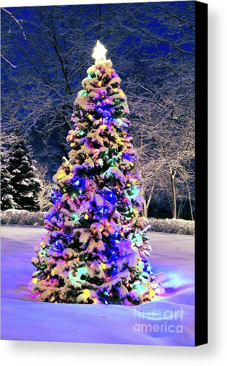 Christmas Canvas Print featuring the photograph Christmas Tree In Snow by Elena Elisseeva