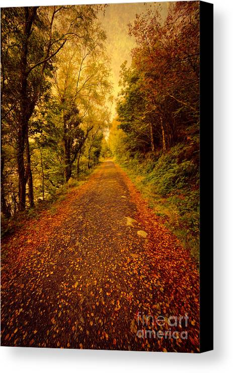Autumn Canvas Print featuring the photograph Country Lane V2 by Adrian Evans