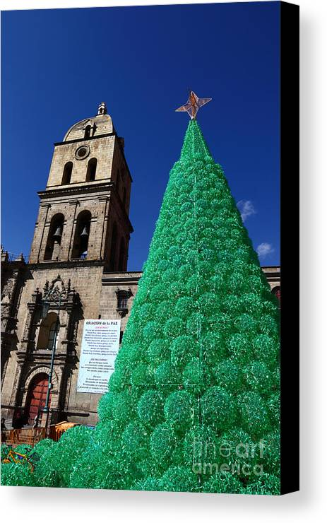 Christmas Canvas Print featuring the photograph Ecological Christmas Tree by James Brunker