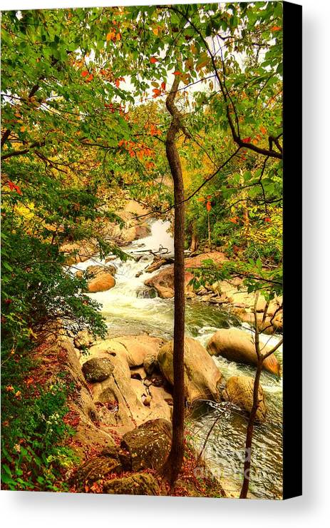 Scenic Canvas Print featuring the photograph Fall River Running by Kathy Baccari