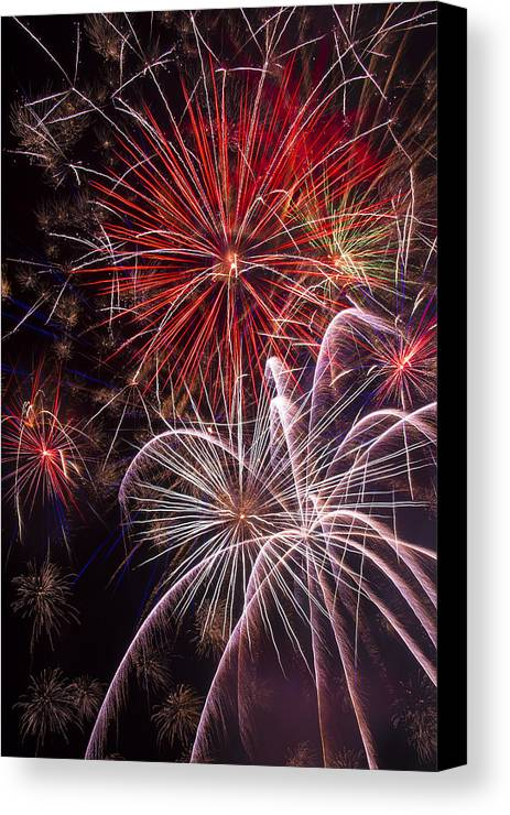 Awesome Fireworks Lights Up The Darkness Canvas Print featuring the photograph Fantastic Fireworks by Garry Gay