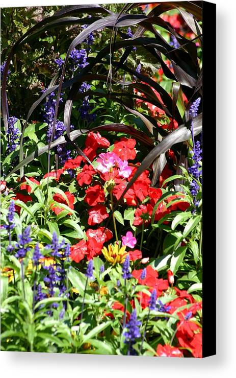 Flowers Canvas Print featuring the photograph Floral by Keith Eisenstadt