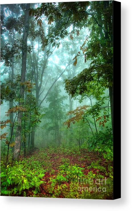 Blue Ridge Mountains Canvas Print featuring the photograph Forest Deep - Forest Green by Dan Carmichael