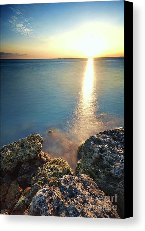 Rocks Canvas Print featuring the photograph From The Sea Rocks by Eyzen M Kim