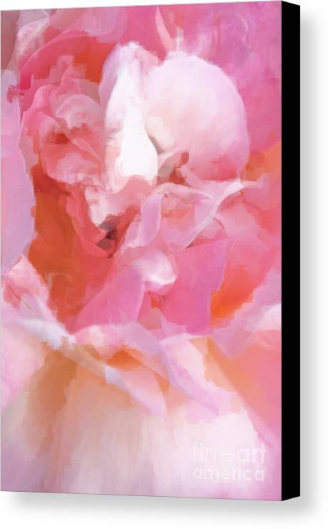 Rose Canvas Print featuring the photograph Garden Ballet by Gwyn Newcombe