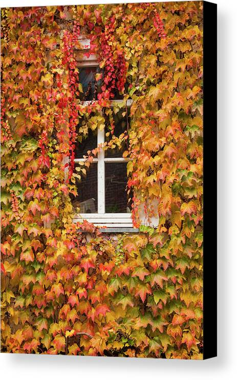 Autumn Canvas Print featuring the photograph Germany, Hesse, Wetzlar, Building by Walter Bibikow