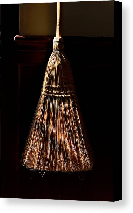Shaker Canvas Print featuring the photograph Golden Broom by Lone Dakota Photography