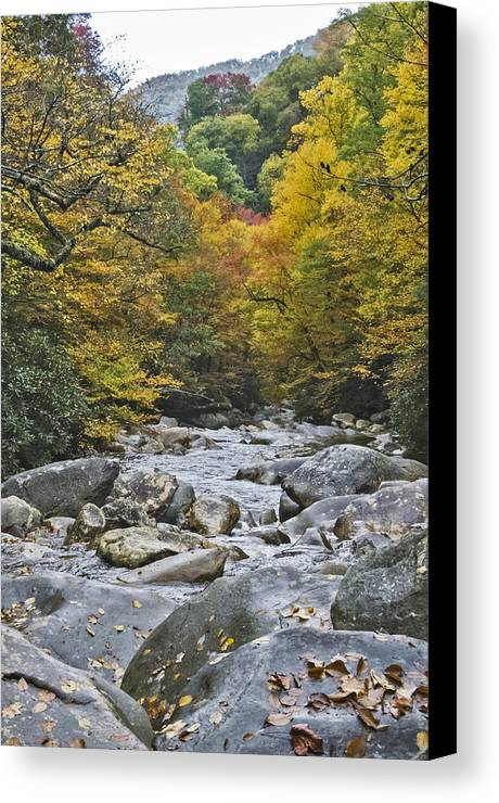 Tennessee Canvas Print featuring the photograph Great Smoky Mountains Creek 4 by Tina Cannon