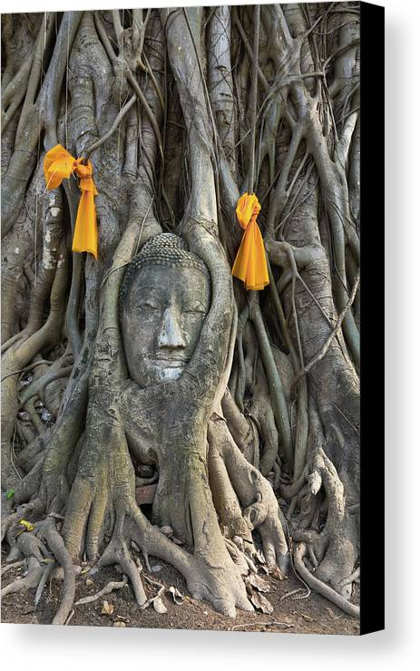 Thai Canvas Print featuring the photograph Head Of The Sand Stone Buddha Image by Tosporn Preede