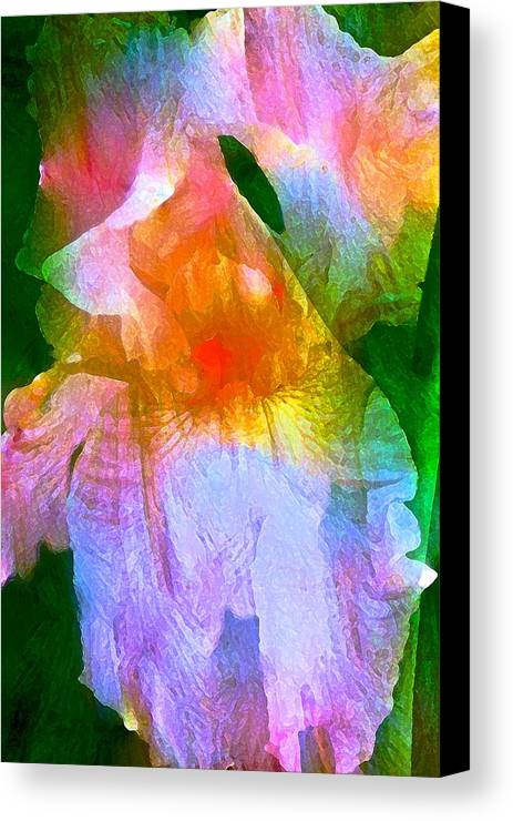 Floral Canvas Print featuring the photograph Iris 53 by Pamela Cooper