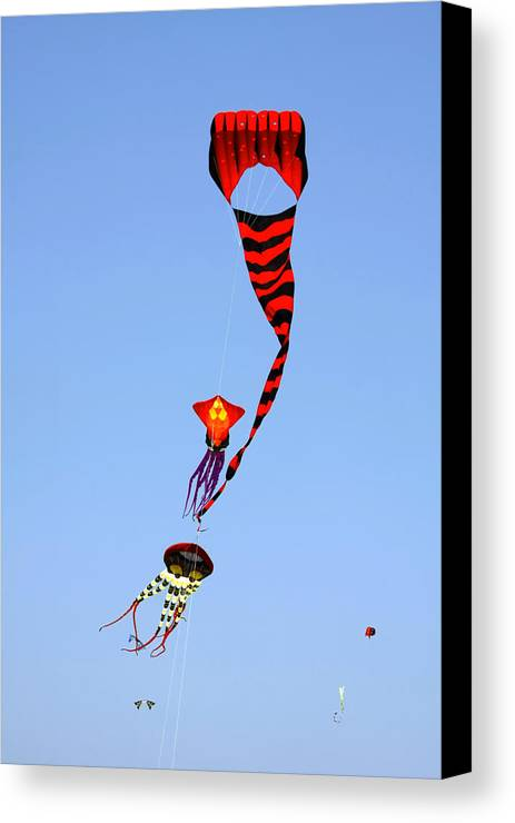 Kite Canvas Print featuring the photograph Kites Over Baja California by Christine Till