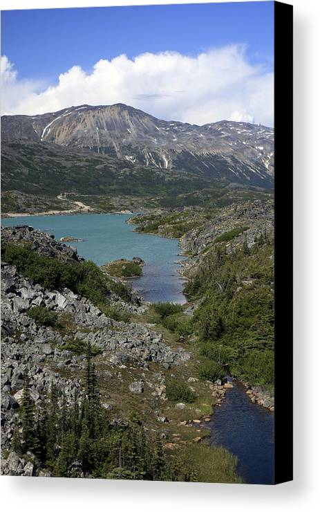 Alaska Photograph Canvas Print featuring the photograph Landscape From High by Gladys Turner Scheytt