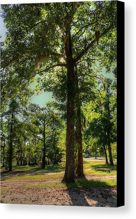 Landscape Canvas Print featuring the photograph Last Day Of Summer by Ester Rogers